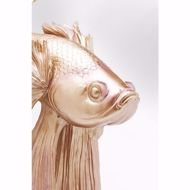 Image sur Gold Betta Fish - Large